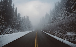 Picture road, nature, fog, winter, snow, forest, haze