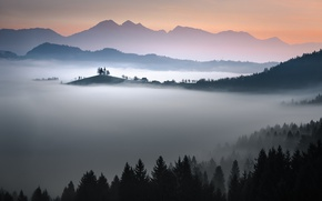 Wallpaper forest, the sky, mountains, fog, Church