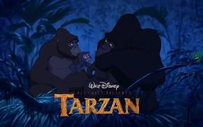 Picture forest, cartoon, monkey, disney, Tarzan, gorilla