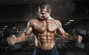 Picture muscle, muscle, press, pose, dumbbells, gym, bodybuilder, abs, Gym, dumbbells, bodybuilder, gym