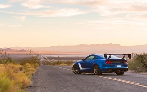 Picture road, car, ford mustang, tuning, roush performance