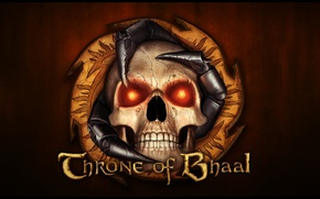 Picture sake, eyes, Throne of Bhaal