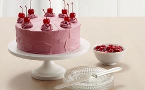 Picture cherry, food, cake, cake, cake, dessert, food, sweet, dessert, cherries