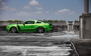 Picture the sky, grass, clouds, green, the fence, green, ford, Ford, Mustang boss 302, profile, black …
