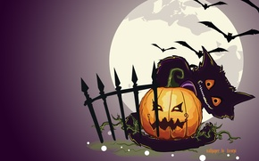Picture cat, night, the moon, the fence, pumpkin, hallowen