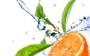 Picture water, squirt, orange, citrus