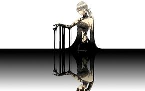 Picture reflection, woman, dirt, mucus, rags, black magic, Furoichigo