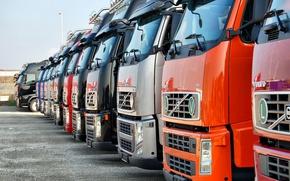 Picture truck, Volvo, trucks, Trak, volvo fh, fh 16, Truckee