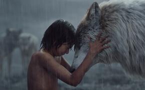 Picture boy, Mowgli, The Jungle Book, The jungle book, Raksha