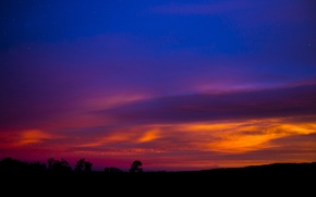 Picture the sky, trees, landscape, sunset, silhouettes