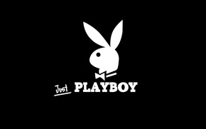 Picture rabbit, journal, playboy