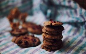 Picture macro, the sweetness, cookies