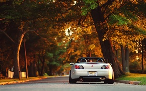 Picture the sun, trees, sunset, Park, honda, s2000