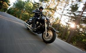 Picture Moto, biker, bike