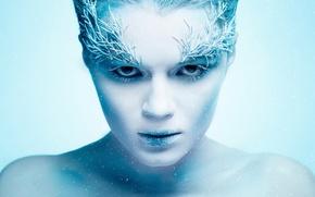 Picture frost, snow, portrait, Ice Queen