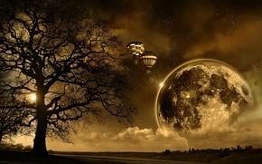 Picture the sun, night, sunrise, earth