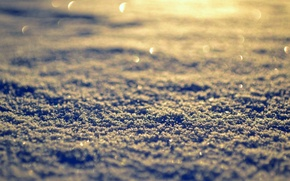 Picture winter, the sun, macro, snow, background, Wallpaper, day, wallpaper, widescreen, winter, background, snow, full screen, …