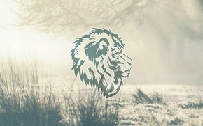 Picture abstract, design, lion, animal, graphic, natural