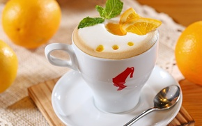 Picture foam, coffee, oranges, milk, spoon, Cup, white, pieces, fruit, cappuccino, citrus, saucer