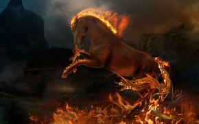 Picture fire, flame, animal, horse