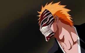 Picture Anime, Bleach, bleach, Kurosaki Ichigo, the mask blank.