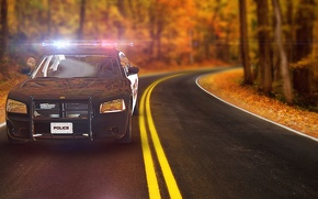 Picture Auto, Police, Autumn, Road, After Effect