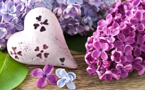 Picture flowers, heart, branch, spring, heart, lilac