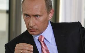 Picture look, President, Putin, Vladimir, Prime Minister, Vladimir Putin
