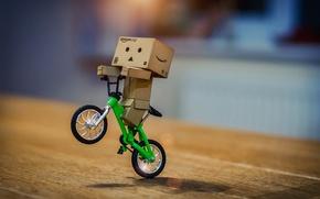 Picture bike, riding, Danbo