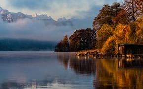 Picture autumn, trees, landscape, lake, beautiful
