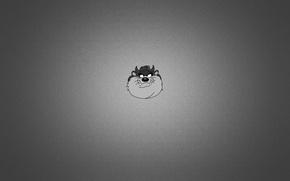 Picture dark, minimalism, head, the devil, minimalism, Tasmanian, Taz-Mania, Taz, Tasmanian