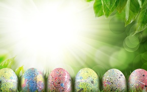 Picture the sky, grass, leaves, clouds, rays, flowers, nature, holiday, eggs, spring, Easter, Easter
