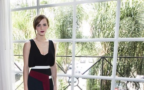 Picture Emma Watson, press conference, March 2014