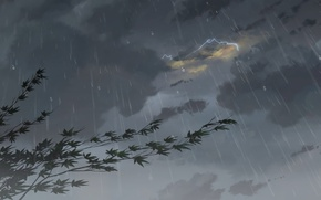 Picture Drops, Rain, Clouds, The storm, Anime, Clouds, Makoto Xingkai, Anime, Maple, Rain, Fog, Drops, The …
