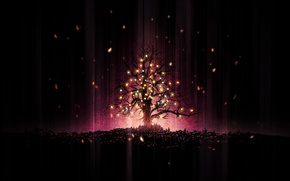 Picture lights, tree, holiday