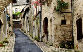 Picture flowers, street, the descent, home, closely