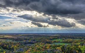 Picture autumn, forest, clouds, landscape, horizon