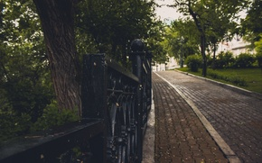 Picture trees, Park, lights, weather, fences