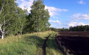 Picture summer, earth, arable land, Russian field