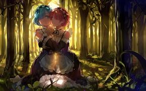 Picture forest, girls, anime, art, sisters, Ram, Rem, Re: Zero kara hajime chip isek or Seikatsu, …