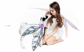 Picture girl, background, dog