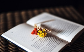 Picture flowers, text, berries, book, page, spike