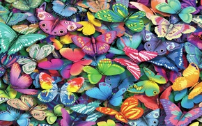 Picture butterfly, paint, color, moth
