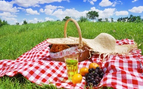 Picture summer, glade, fruit, picnic, basket, Picnic Day