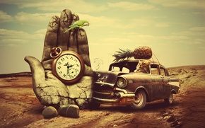 Picture road, machine, crash, cat, watch, parrot, pineapple, Palm