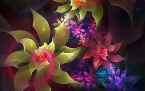 Wallpaper flowers, the volume, light, line, petals, spiral