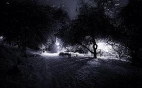 Picture snow, manhattan, central park