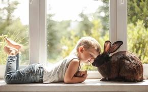 Picture love, mood, boy, rabbit, window, friendship, friends, on the windowsill
