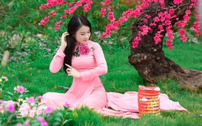 Picture grass, face, Sakura, dress, Asian, sitting, flowering