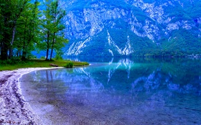 Picture trees, mountains, lake, slope